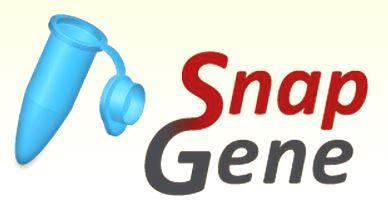 SnapGene 5.2.5 Crack + Registration Code Latest Version